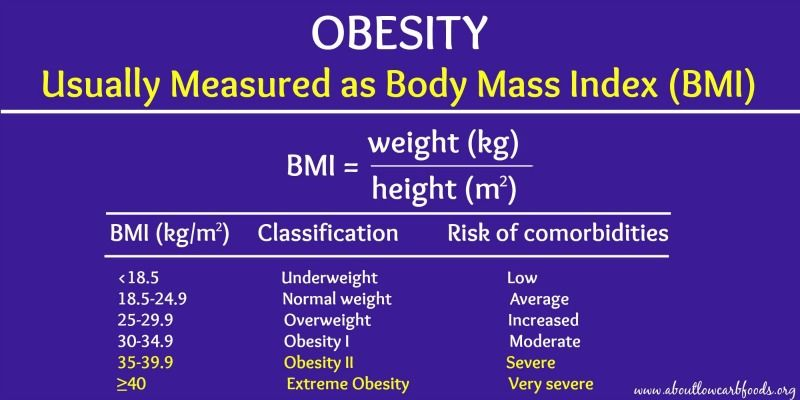 BMI and Obesity: Determining Your Risk