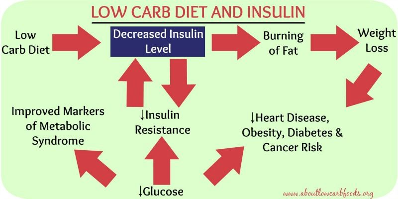 Low Carb Diet and Insulin